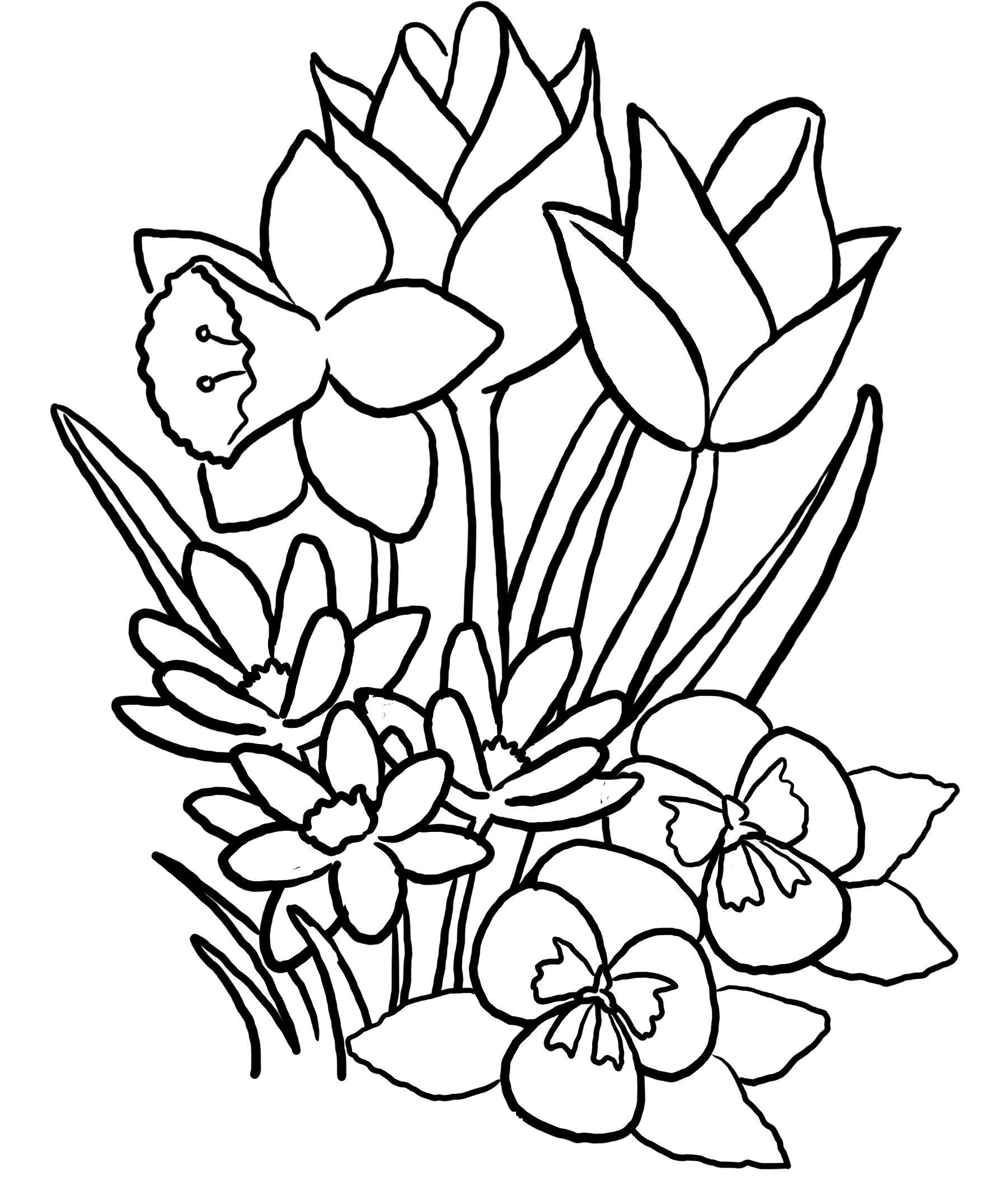 Frühlingsblumen Ausmalbilder  KonaBeun zum ausdrucken ausmalbilder frühlingsblumen