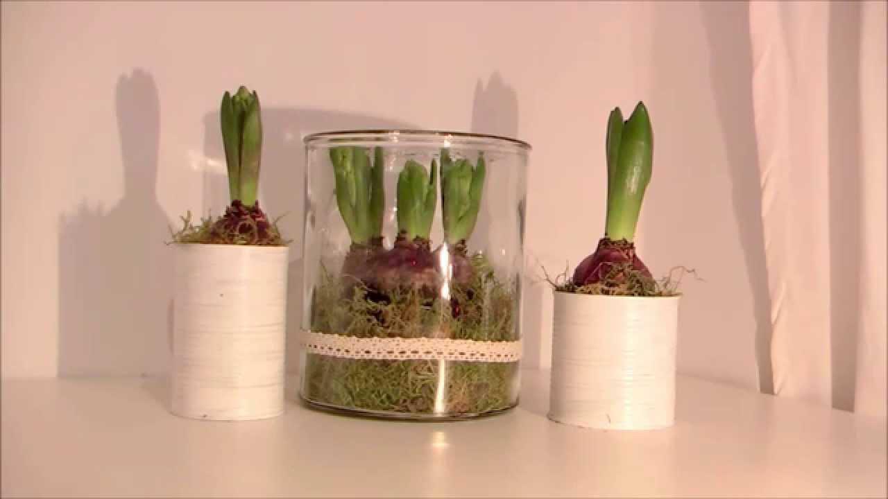 Frühlingsdeko Diy  DIY Frühlingsdeko schnell und günstig