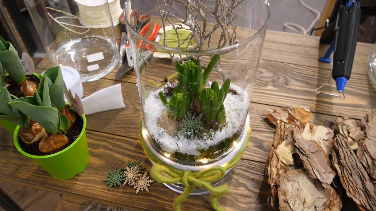 Frühlingsdeko Diy  DIY Winterhafte Frühlingsdeko im Glas mit Hyazinthen und