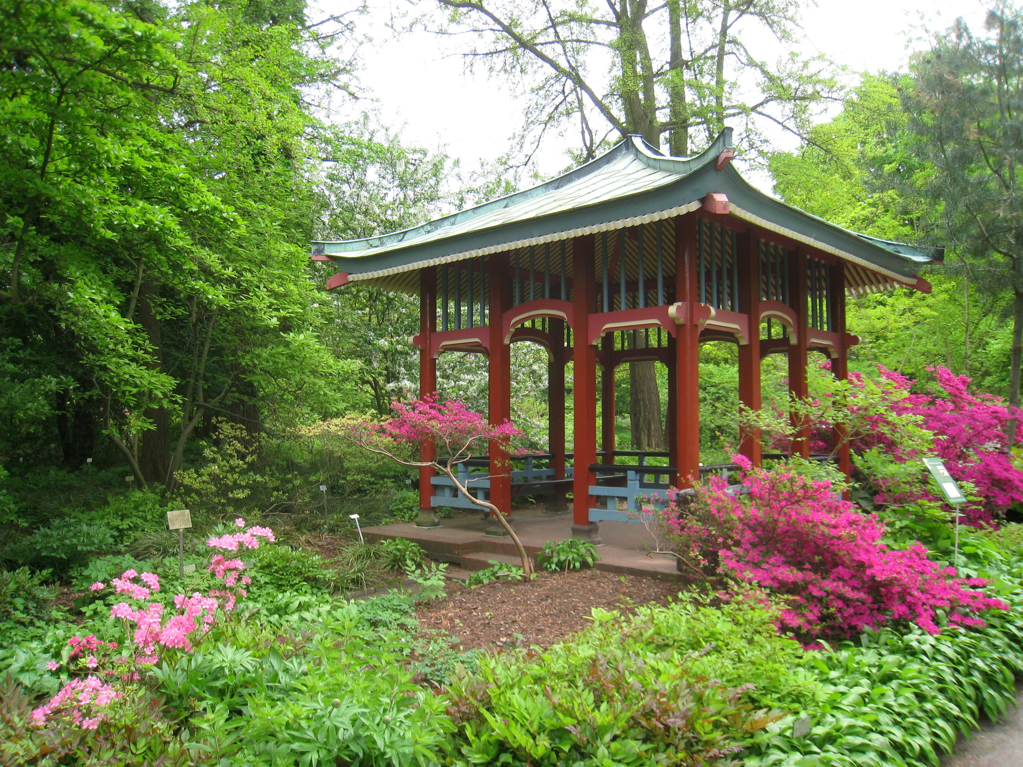 Garten Berlin  File Botanischer Garten Berlin Dahlem view IMG 8650