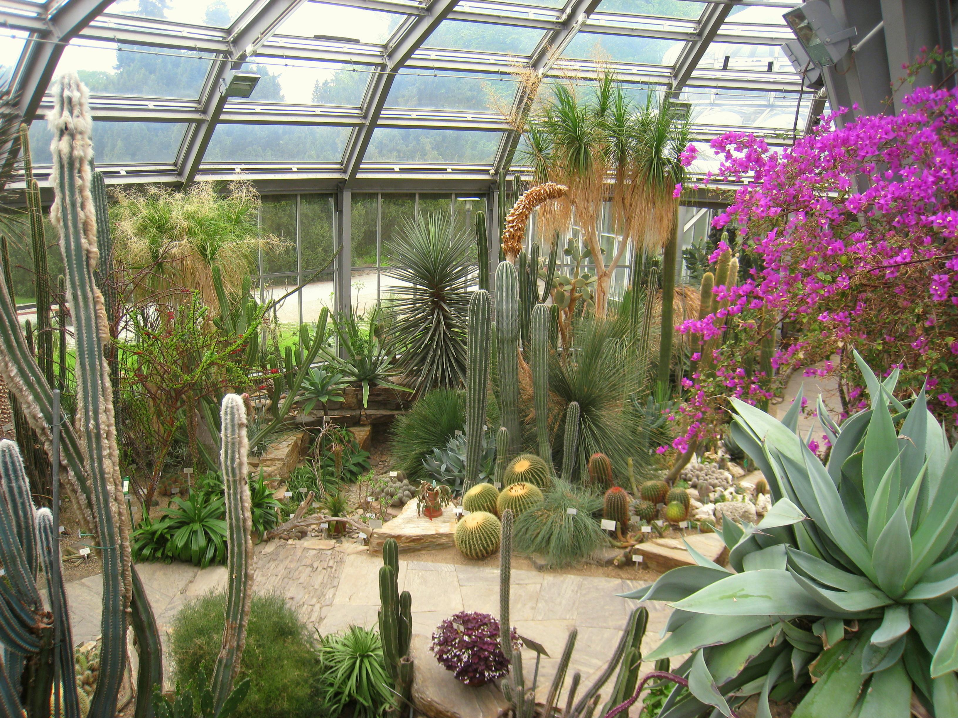 Garten Berlin  Feinripp Botanischer Garten Lichterfelde ein Must