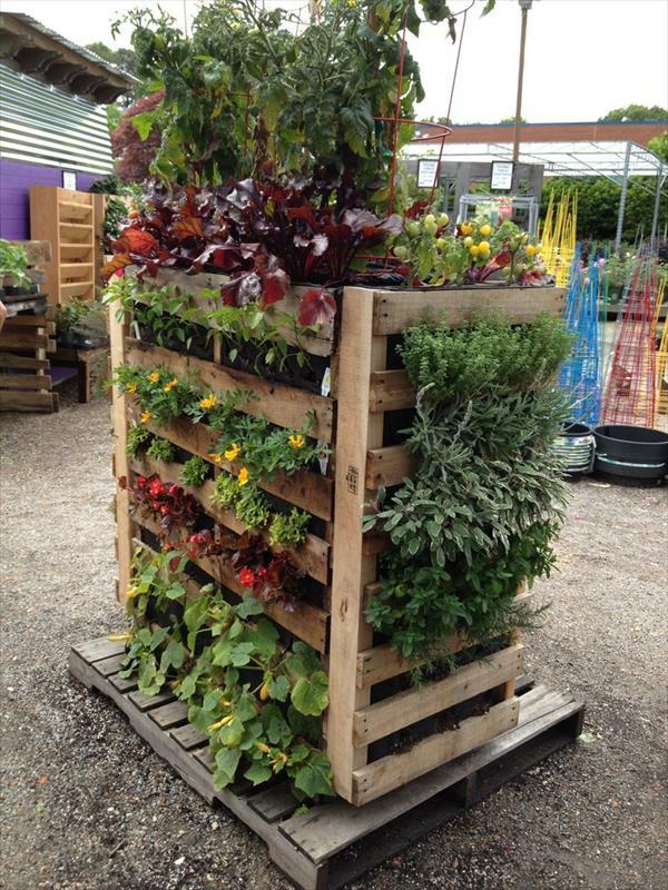Garten Diy  Vertikaler Garten und Blumenbeet anlegen DIY aus