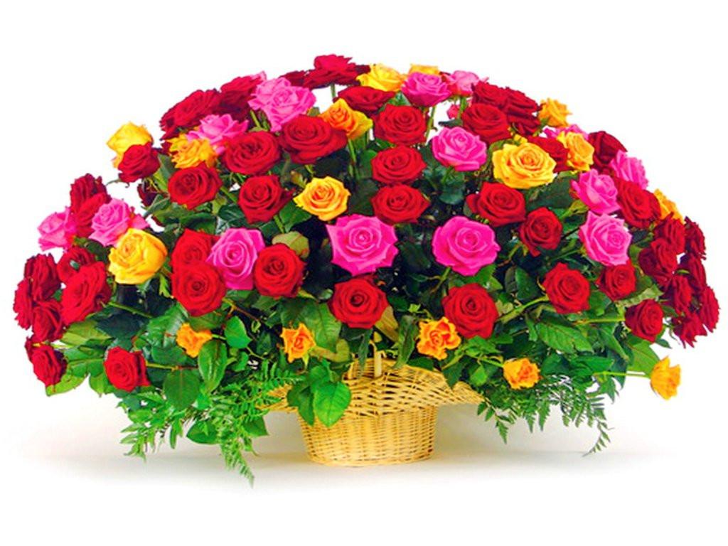 Geburtstagsbilder Blumenstrauss  Bilder Blumenstrauß Geburtstag