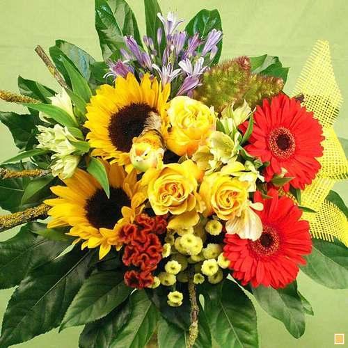 Geburtstagsbilder Blumenstrauss  blumenstrauss Kategorie blumen bei Gästebuchbilder gratis