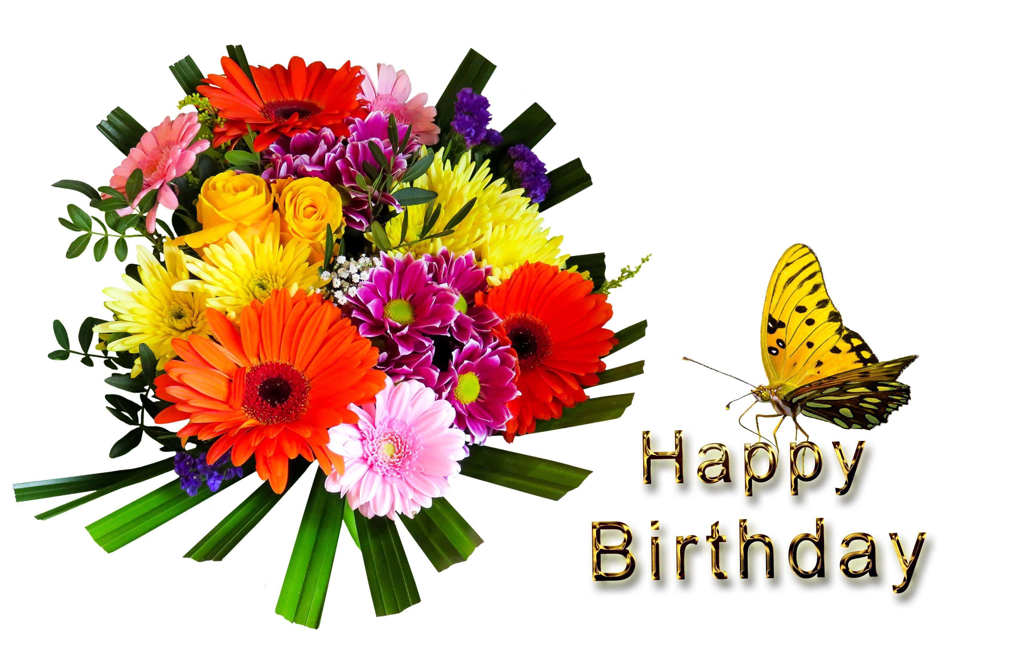 Geburtstagsbilder Blumenstrauss  Kostenloses Foto zum Thema alles gute zum geburtstag