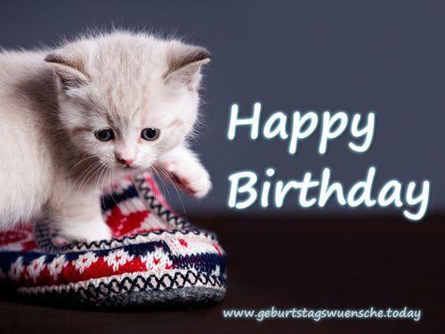 """Geburtstagsbilder Mit Katzen  Schönes Geburtstagsbild """"Happy Birthday"""" mit süßer Katze"""