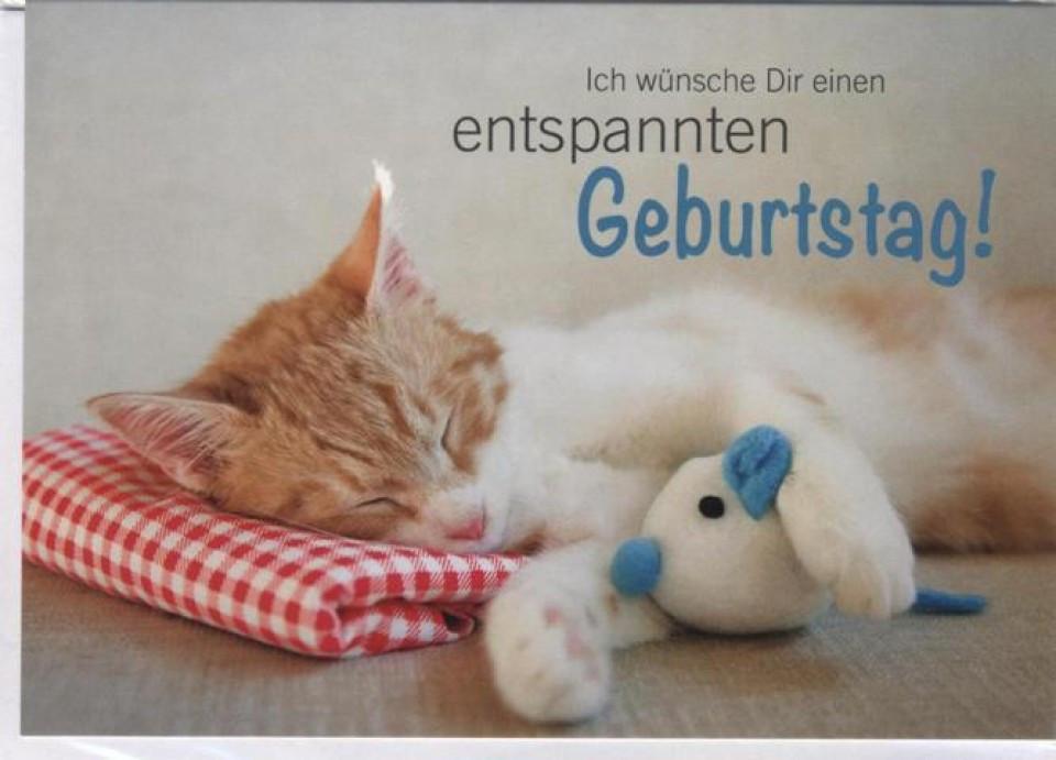 Geburtstagsbilder Tiere  Geburtstagskarte Tiere Katze Ich wünsche Dir einen