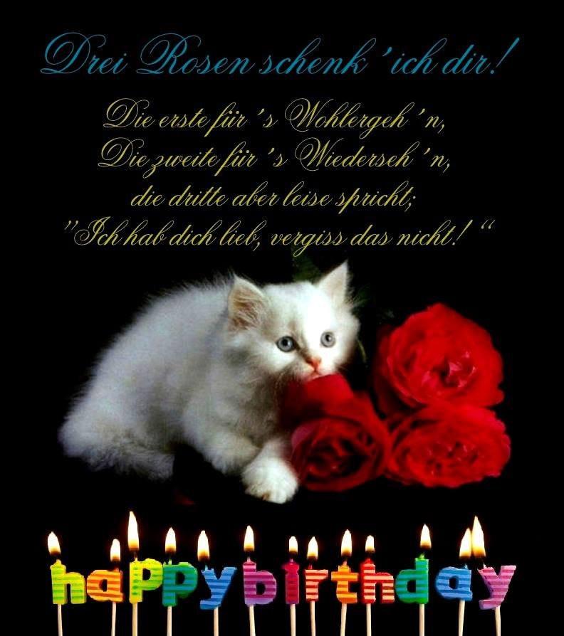 Geburtstagsbilder Tiere  150 Geburtstagsbilder von Tiere Alles Liebe zum Geburtstag