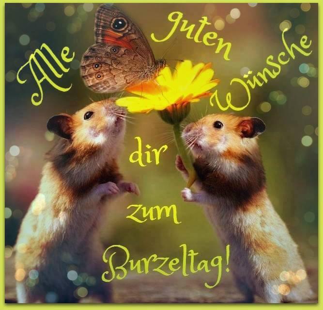 Geburtstagsbilder Tiere  Alle guten Wünsche dir zum Burzeltag ツ