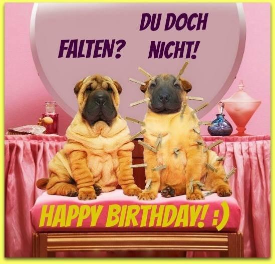 Geburtstagsbilder Tiere  90 Geburtstagsbilder von Tiere Alles Liebe zum Geburtstag
