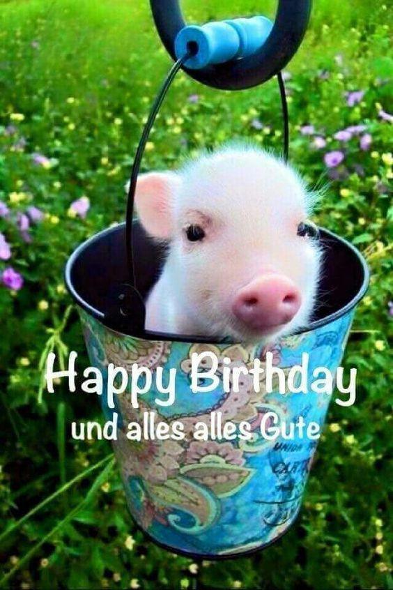 Geburtstagsbilder Whatsapp  Verschicke besten und lustigsten Bilder zum Geburtstag
