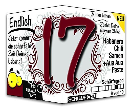 Geburtstagsgedichte Zum 17 Geburtstag  Geburtstagsgeschenk zum 17 geburtstag madchen – Beliebte