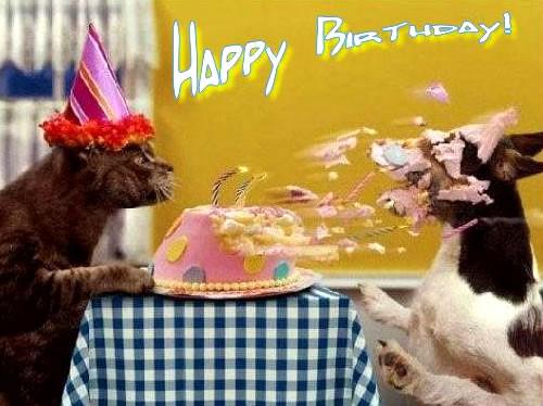 Geburtstagsglückwünsche Tiere  Glückwünsche Zum Geburtstag Tiere Ein