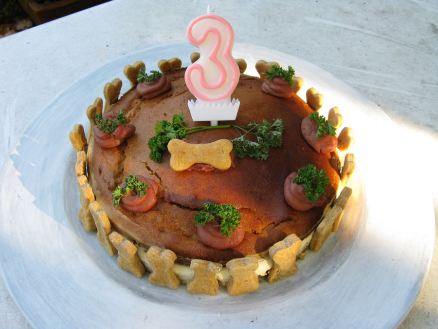 Geburtstagskuchen Hund  Geburtstagskuchen Willkommen bei Hundekraecker