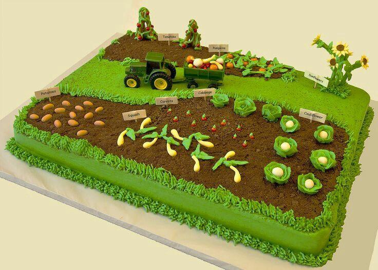 Geburtstagskuchen Traktor  Tractor cake Retirement party