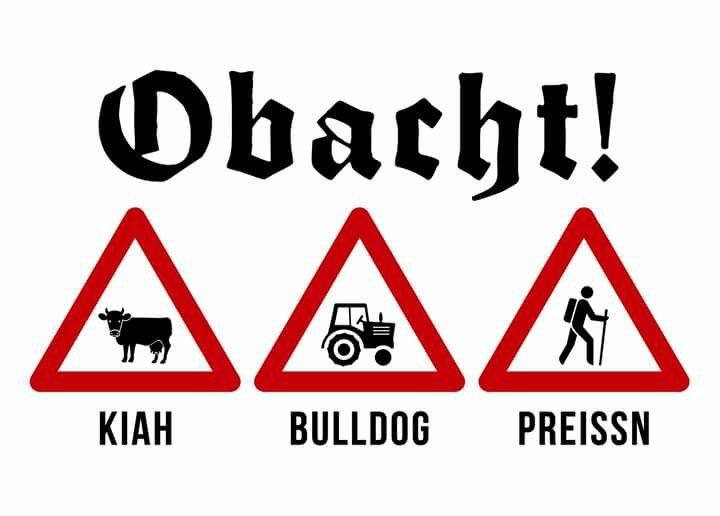 Geburtstagssprüche Auf Bayrisch Witze  148 besten BAYRISCHE SPRÜCHE na sowas von lustig Bilder