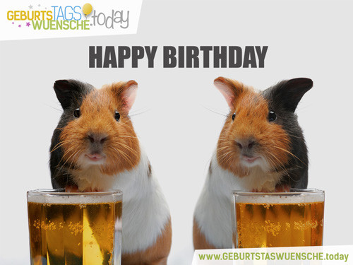 Geburtstagssprüche Bilder  Witzige coole und lustige Geburtstagsbilder