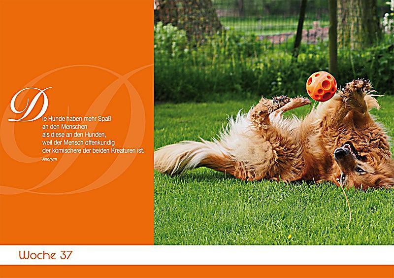 Geburtstagssprüche Für Hundeliebhaber  Für Hundeliebhaber Kalender günstig bei Weltbild
