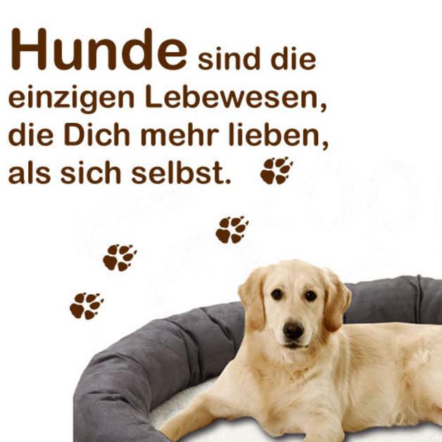 Geburtstagssprüche Für Hundeliebhaber  Weiteres Wandtattoo für Hundeliebhaber ein