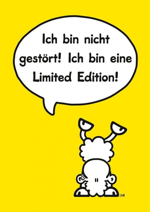 Geburtstagssprüche Sheepworld  Die 25 besten Ideen zu Sheepworld auf Pinterest