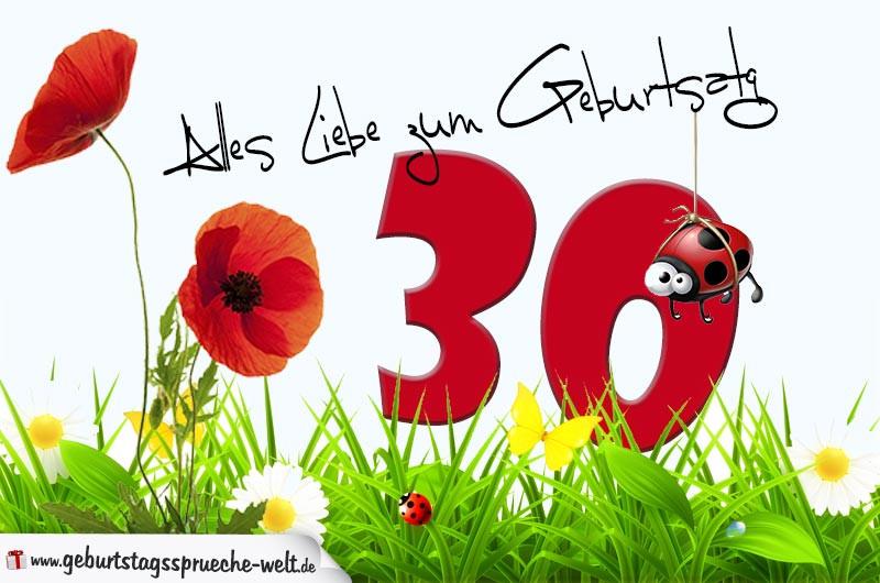 Geburtstagssprüche Zum 30 Frau  Geburtstagskarte mit Blumenwiese zum 30 Geburtstag