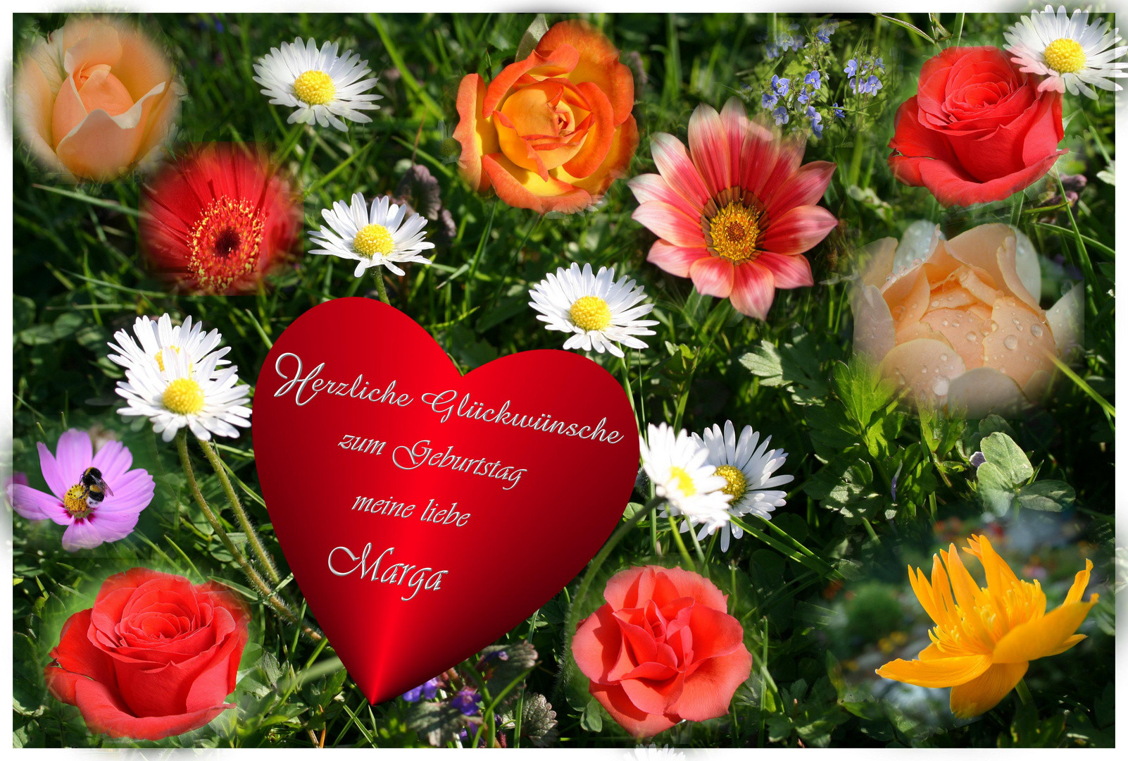 Geburtstagswünsche Englisch Bilder  Liebste Geburtstagswünsche Foto & Bild