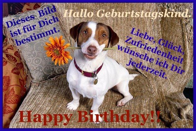 Geburtstagswünsche Hundeliebhaber  Bilder mit dem Tag hund Seite 3