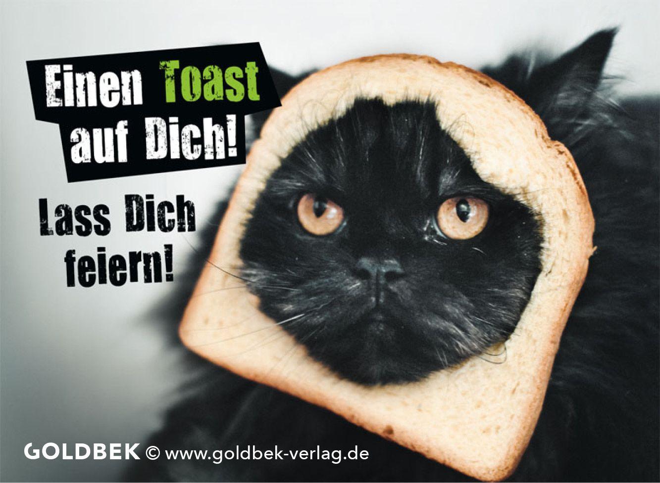 Geburtstagswünsche Katze  Postkarten Geburtstag Humor Lustiges Katzen Motiv