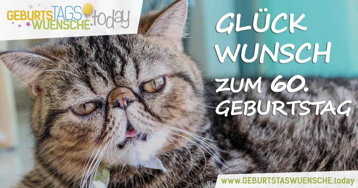"""Geburtstagswünsche Katze  Sprüche zum 60 Geburtstag lustiges Bild """"Glückwunsch"""""""