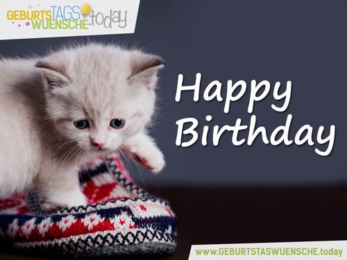 """Geburtstagswünsche Katze  Schönes Geburtstagsbild """"Happy Birthday"""" mit süßer Katze"""