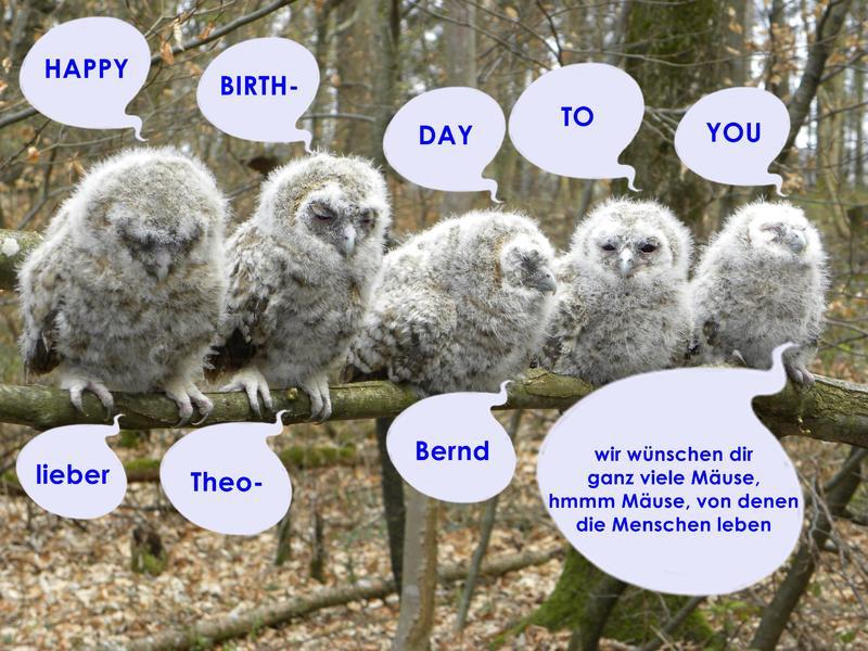 Geburtstagswünsche Versaut  June C Miller Geburtstagswünsche Schwäbisch