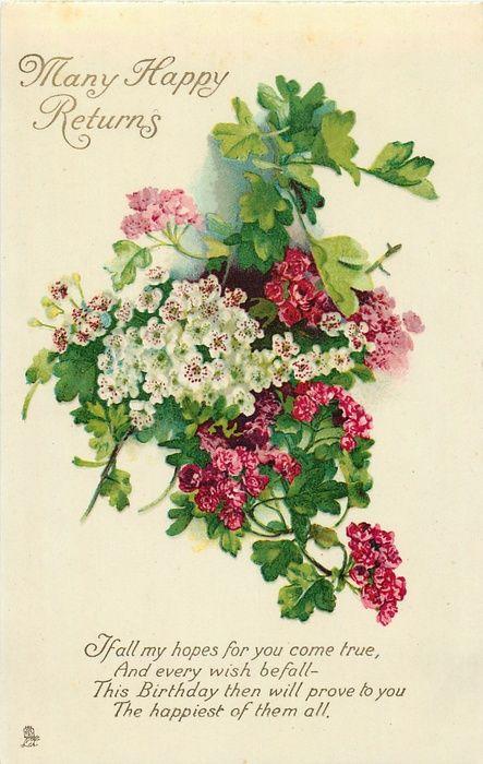 Geburtstagswünsche Vintage  Vintage card with red & white flowers Bilder
