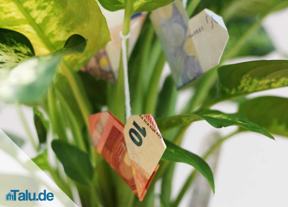 Geldschein Geschenke  Geldschein zu einem Herz falten in 5 Schritten Talu
