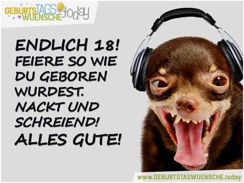 Gemeine Geburtstagssprüche  41 Neu Fotografie Von Lustige Gemeine Geburtstagssprüche
