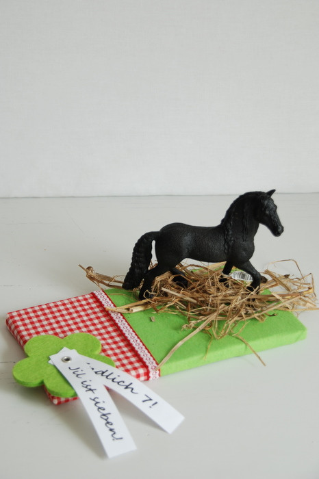 Geschenke Für Pferdeliebhaber  ein Pferd zu verpacken… – Liebesbotschaft Blog