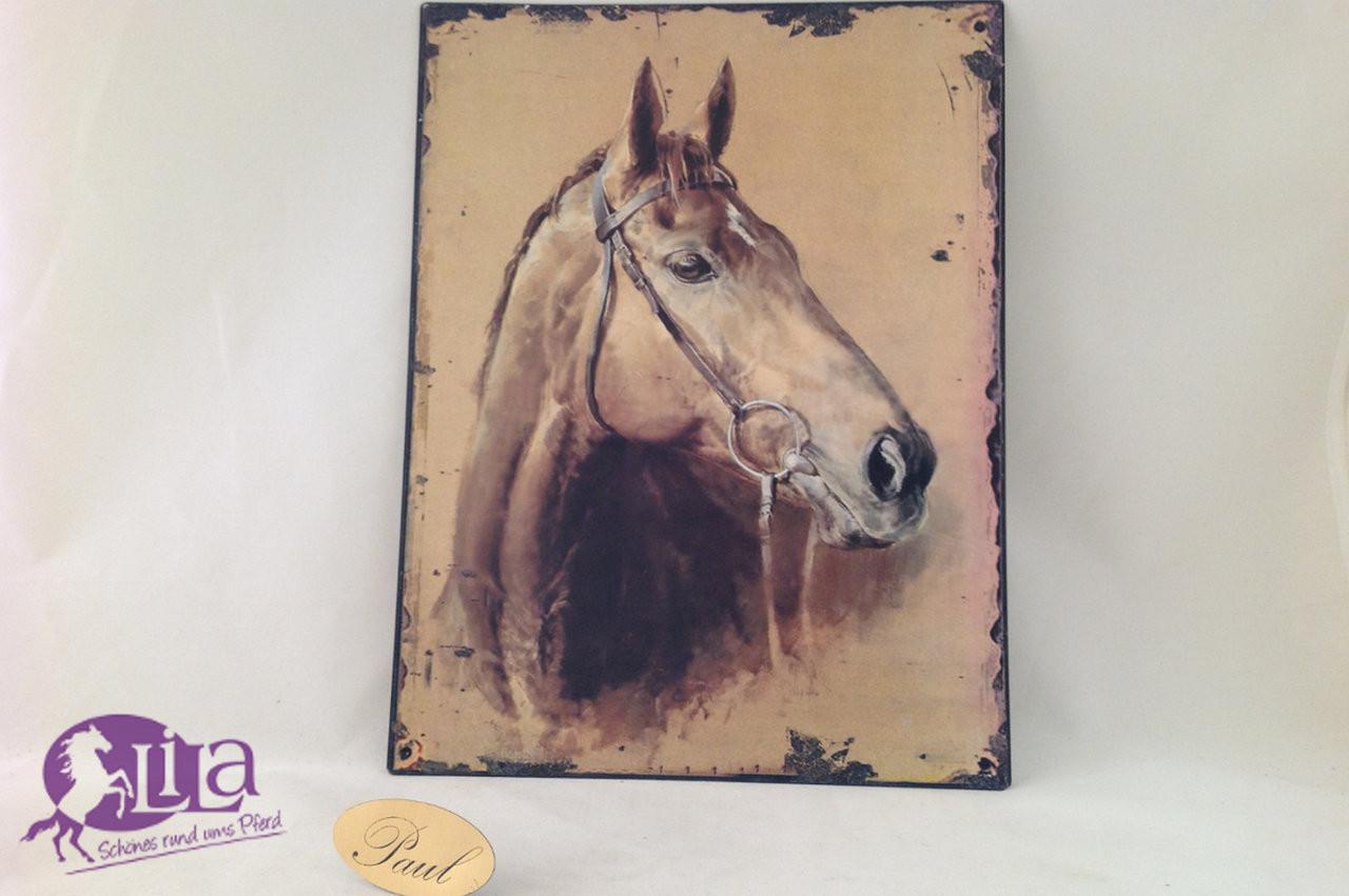 Geschenke Für Reiter  Metallschild Pferd Geschenke für Reiter