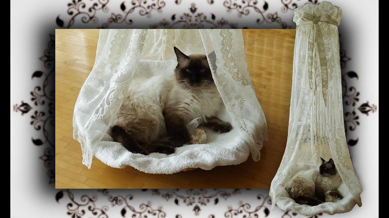 Katzen Diy  DIY 😻 Himmelbett Körbchen für Katzen