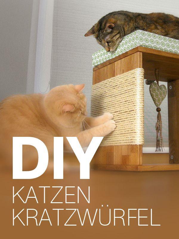 Katzen Diy  Katzenmöbel Kratzwürfel für Katzen selber bauen DIY