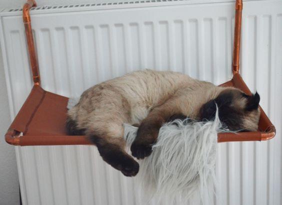 Katzen Diy  DIY Heizungsliege für Katzen aus Kupfer und Leder
