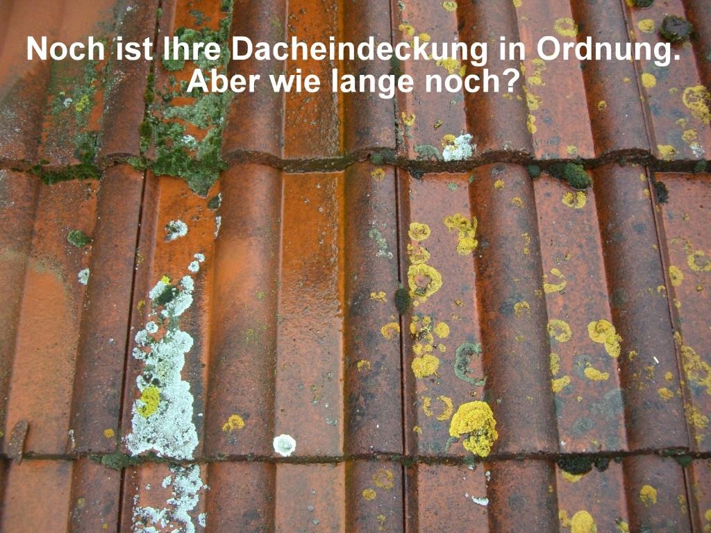 Konzessionsträger Im Handwerk  Dachbeschichtung in Berlin in Rehfelde