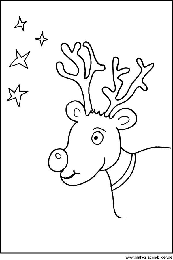 Kostenlose Malvorlagen Weihnachten  Malvorlagen Rentier Weihnachten und Sterne