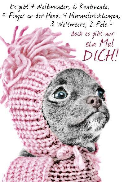 Lustige Geburtstagskarten Sprüche  Undercover Lustige Sprüche Geburtstagskarten kollektion