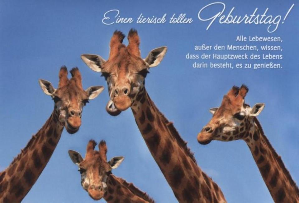Lustige Geburtstagskarten Sprüche  Geburtstagskarte Sprüche lustig Einen tierisch tollen