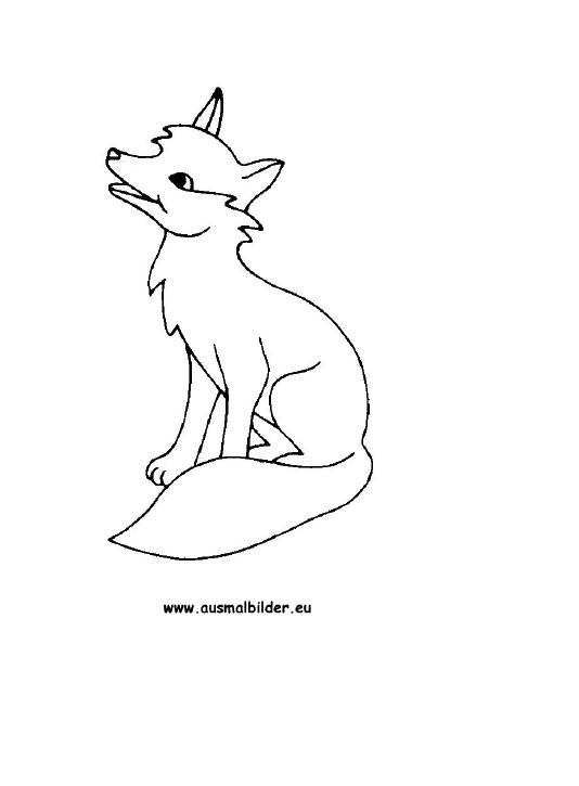 Malvorlagen Fuchs  AUSMALBILDER FUCHS FREE DOWNLOAD Ausmalbilder