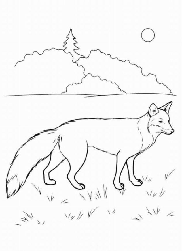 Malvorlagen Fuchs  Ausmalbilder zum Drucken Malvorlage Fuchs kostenlos 2