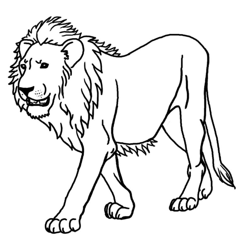 Malvorlagen Löwe  Ausmalbilder zum Ausdrucken Gratis Malvorlagen Löwe 2