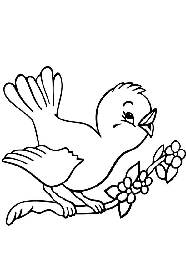 die besten ideen für malvorlagen vögel  beste wohnkultur