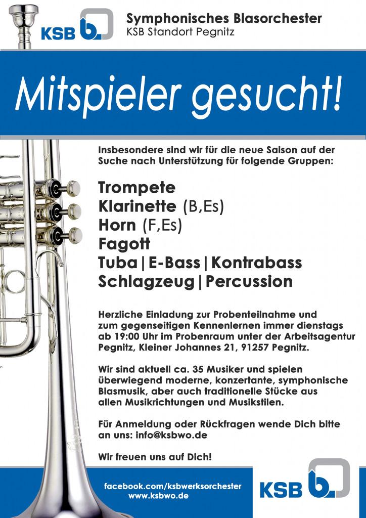 Musiker Für Geburtstagsfeier Gesucht  Neue Musiker gesucht – herzliche Einladung – KSB