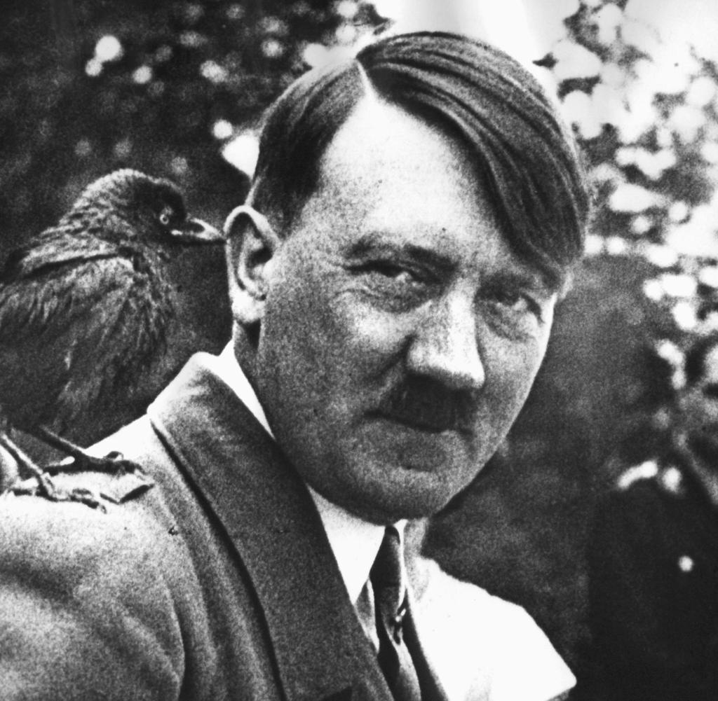 Nazi Haarschnitt  Höcke im Recht – 8 Dinge an Adolf Hitler liebenswert