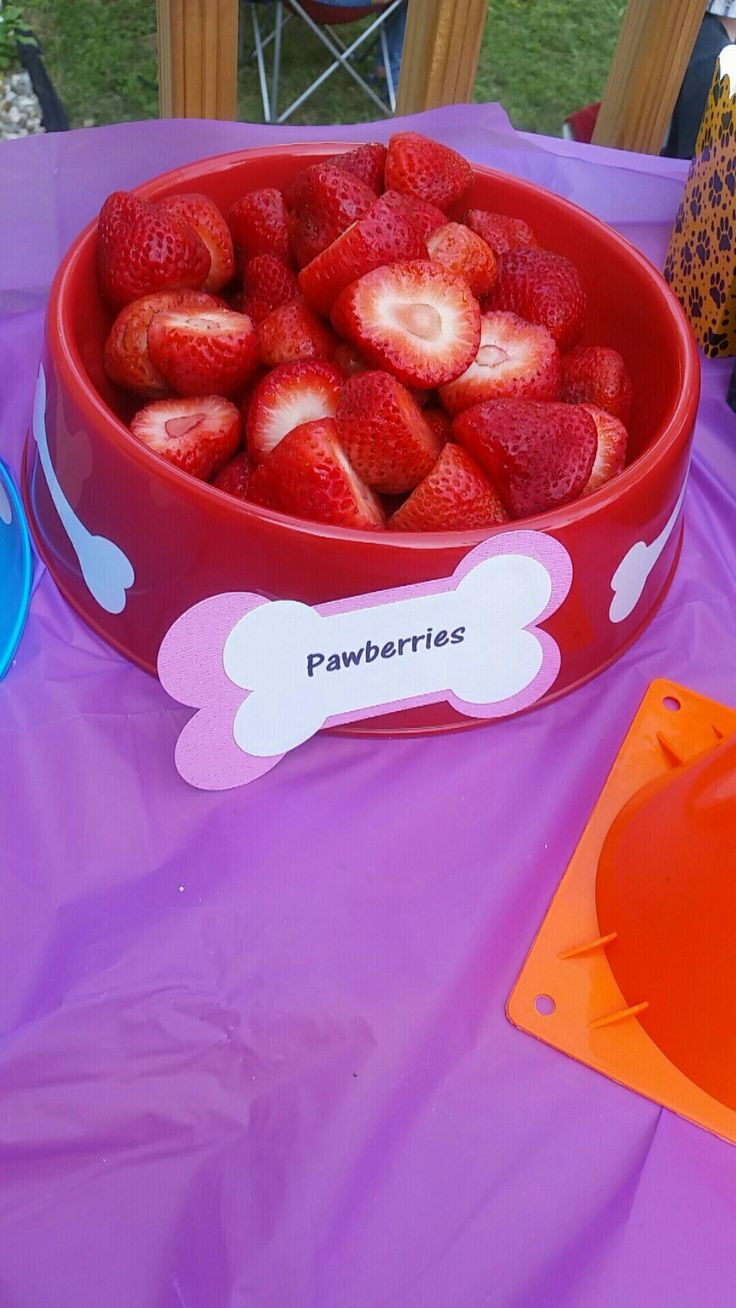Paw Patrol Geburtstagsparty  55 besten paw patrol party • kindergeburtstag Bilder auf